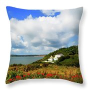 19th Century Duncannon Lighthouse Throw Pillow