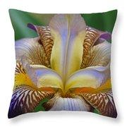 1st Iris Throw Pillow