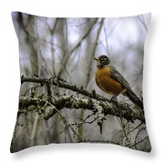 1st Robin Of Spring Throw Pillow