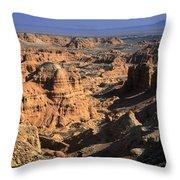 The Gobi Throw Pillow