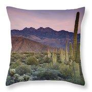 A Desert Sunset  Throw Pillow