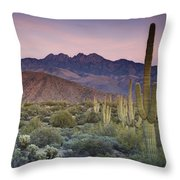 A Desert Sunset  Throw Pillow
