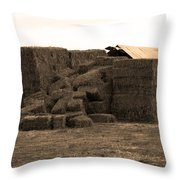 A Needle In A Haystack Throw Pillow