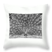 A Peacocks Feathers Throw Pillow