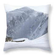 Absolute Solitude Throw Pillow