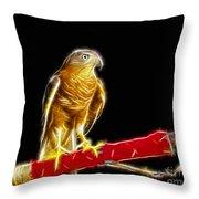 Accipiter Badius - Shikra Fractal Art Throw Pillow