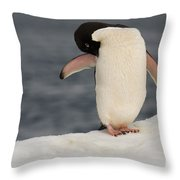 Adelie Penguin Throw Pillow