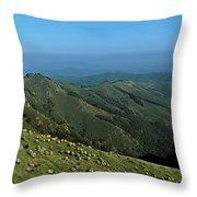 Aerial View Of Mountain Range Throw Pillow