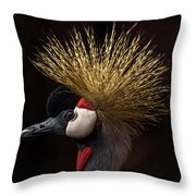 African Crowned Crane Throw Pillow