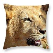 African Lion Cub Portrait Throw Pillow