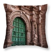 Afternoon Nap Throw Pillow by James Brunker
