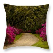 Afton Villa Drive Throw Pillow