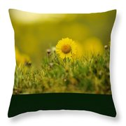 Alpine Flowers Throw Pillow