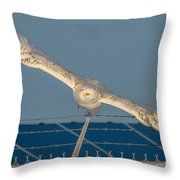 Amazing Wingspan Throw Pillow