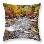 American Fork Canyon Creek In Autumn - Utah Throw Pillow
