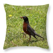 American Robin Gathering Worms Throw Pillow