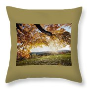 Abstract Irish Sunset Throw Pillow