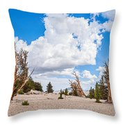 Ancient Panorama - Bristlecone Pine Forest Throw Pillow