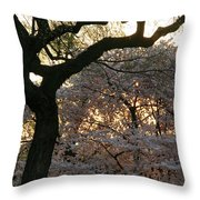 Angry Trees At Sunset Throw Pillow