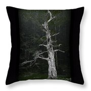 Anthropomorphic Tree Throw Pillow