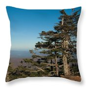 Appalachian Mountains From Mount Mitchell  Throw Pillow