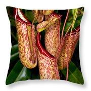 Asian Pitcher Plant Throw Pillow