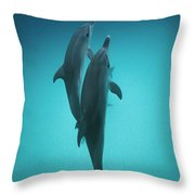 Atlantic Spotted Dolphin Pair Bahamas Throw Pillow