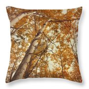 Autumn Aspens Throw Pillow by Priska Wettstein