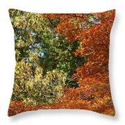 autumn colours in Bavaria Throw Pillow