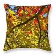 Autumn Maple Leaves Throw Pillow