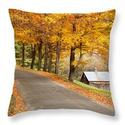 Autumn Road Throw Pillow by Brian Jannsen