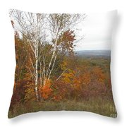 Autumn With Birch Throw Pillow