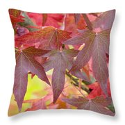 Autumnal Liquidambar Leaves Throw Pillow