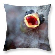 Baby Bird Throw Pillow by Henrik Lehnerer