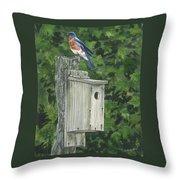 Backyard Bluebird 2 Throw Pillow