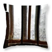 Barn Light Throw Pillow