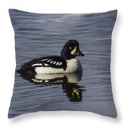 Barrows Goldeneye Throw Pillow