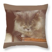 Basie Throw Pillow