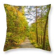 Beautiful Autumn Forest Mountain Stair Path At Sunset Throw Pillow