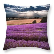 Beautiful Lavender Field Landscape With Dramatic Sky Throw Pillow