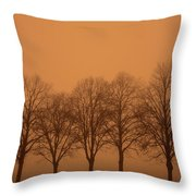 Beautiful Trees In The Fall Throw Pillow