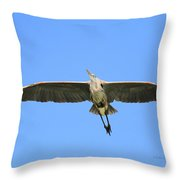 Beauty Of Flight Throw Pillow