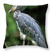Bec En Sabot Du Nil Balaeniceps Rex Throw Pillow