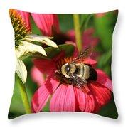 Bee Nice Throw Pillow