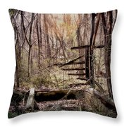 Been There Throw Pillow