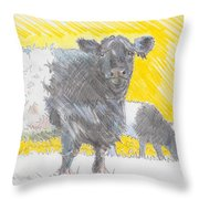 Belted Galloway Cows Throw Pillow