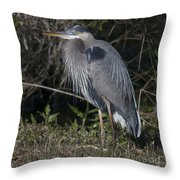 Birds Of The Lowcountry Throw Pillow