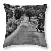 Black And White Buggy Throw Pillow