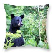 Black Bear Throw Pillow