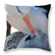 Black-browed Albatross With Chick Throw Pillow by Art Wolfe